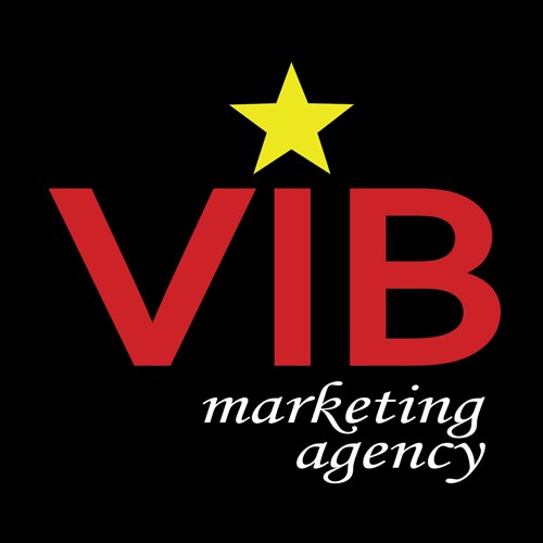 VIB Marketing Agency | Search Engine Optimization | SEO Service